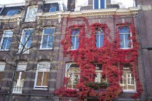 Autumn Colors 008